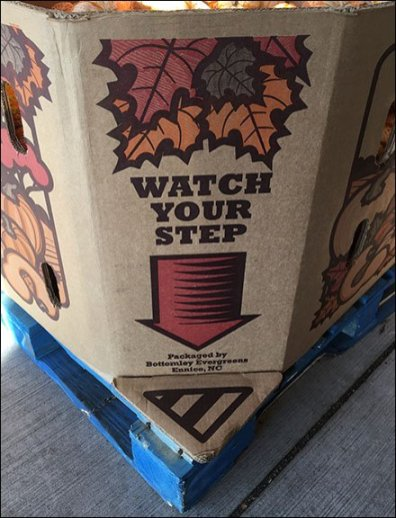 Watch Your Step Pallet Warning for Fall