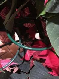 Poinsettia Ring Hook Tree as Display Rack
