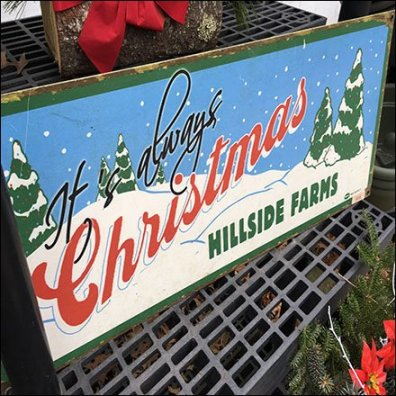 It's Always Christmas At The Farm Store Feature