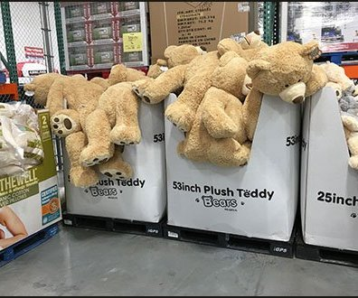 Plush Teddy Bear Pallet Merchandising