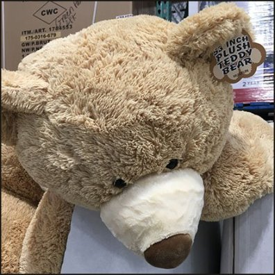 Plush Teddy Bear Pallet Merchandising Feature