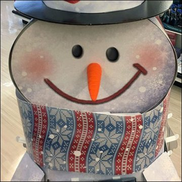 RiteAid Snowman Gift Card Display Feature