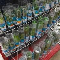 Tiered Aquarium Plant Curved Shelf Rack Feature