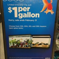 $1 Per Gallon Aquarium Sale Pricing Strategy