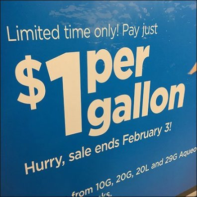 $1 Per Gallon Aquarium Sale Feature