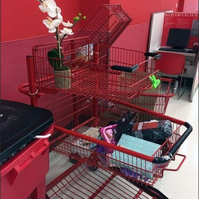 Orchid Delivery By Return Cart