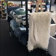Transport Cart As Mobile Display Vehicle