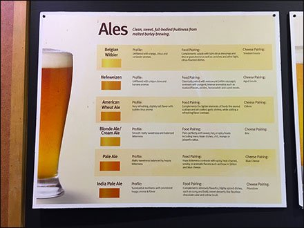 Ale and Lager Definition At The Liquor Store