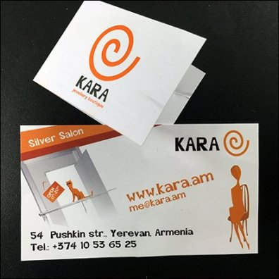 Kara Silver Salon Branded Business Card