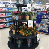Circular Dunnage Rack Floral Display
