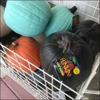 Funkins Carvable Artificial Pumpkin Bulk Bin
