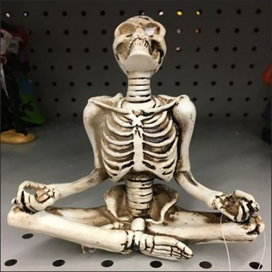 Yoga Skeleton Padmasana Position Pose
