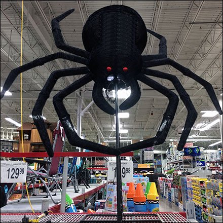 Giant Halloween Spider Pounces at Sams Club