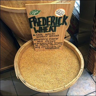 Local Farm Organic Wheat By The Barrel