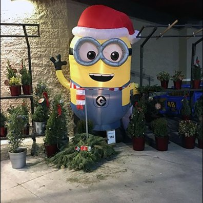 Minion Outdoor Inflatable Seasonal Welcome