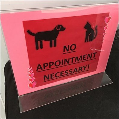 No Appointment Necessary PetCare Promise