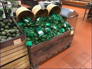 Avocado Defined Bushel Basket Display