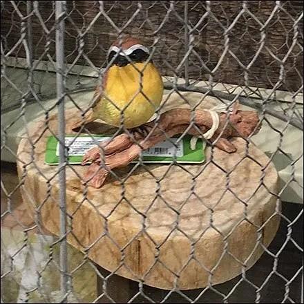 Hallmark Chicken Wire Birdcage Prop Aux