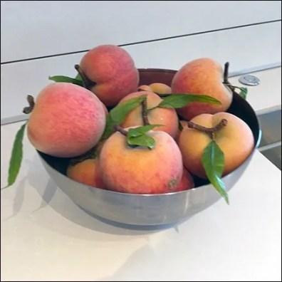 Plump Georgia Peach Showroom Propping