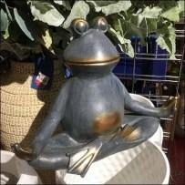 Padmasana Yoga Frog Visual Merchandising