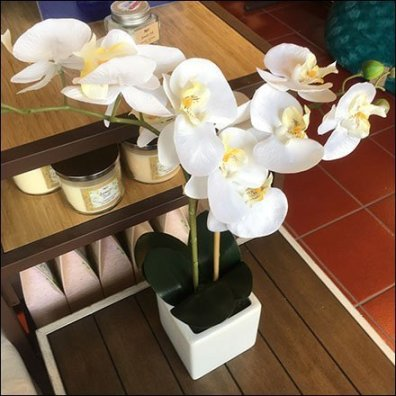 Fresh Orchid Visual Merchandising Prop