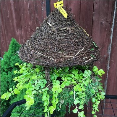 Rustic Thatched Hut Birdhouse Planter Prop