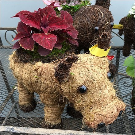 Thatched Animal Planter Mated-Pair Prop