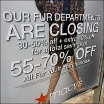 Fine Fur Vault Closing Announcement