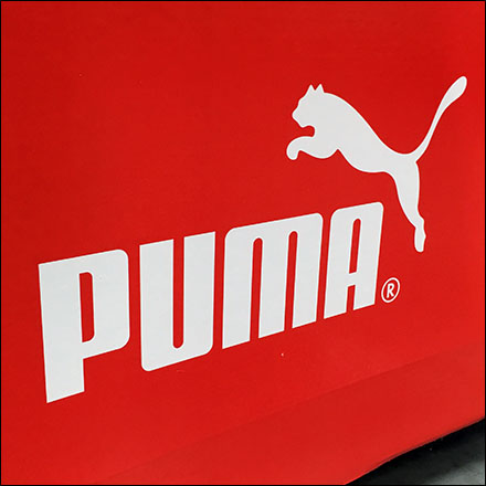 Puma Polarized Sunglasses Pallet Display