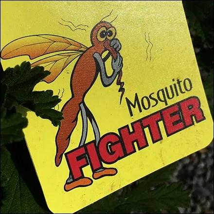 Citrosa Mosquito Fighting Plant Ploy