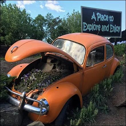 Volkswagen Beetle Garden Planter Display