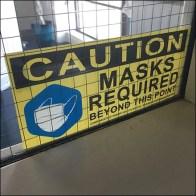 CoronaVirus Professional Services Face Mask