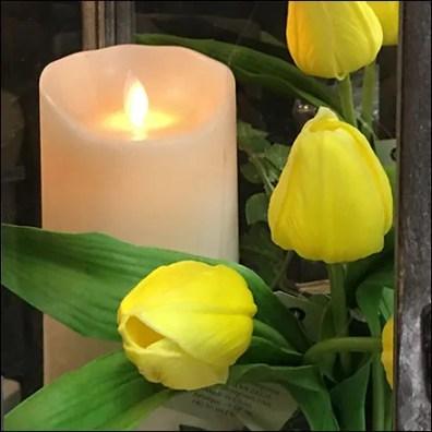 Candle Vintage Lantern Museum Case