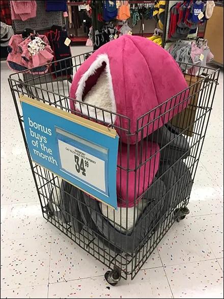 Cat Igloo Pet-Bed Bulk-Bin Merchandising