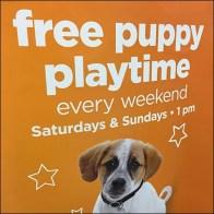 Tricorne Petco Free-Puppy-Playtime Sign