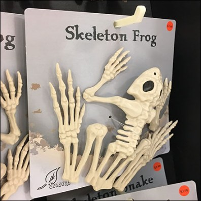 Freestanding Halloween Skeleton Merchandising