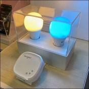 Sengled Smart-Lighting Custom Display