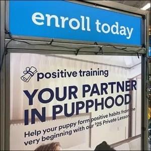 Positive Puppy Training Partner Display