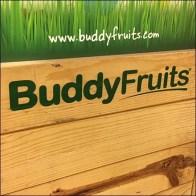 Buddy-Fruits Wood Bulk-Bin Display