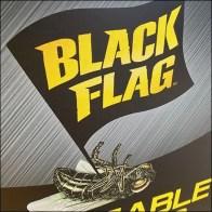 Black-Flag Fly-Trap Fly Mascot Branding