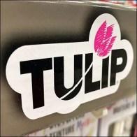Michaels Tulip Mystery Dye-Poppers Sidekick