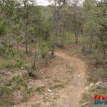 Delbert's Trail