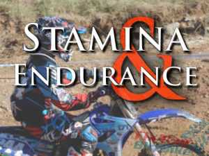 Rider Fitness: Stamina and Endurance Training