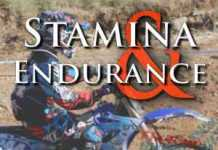 Rider Fitness: Stamina and Endurance Training