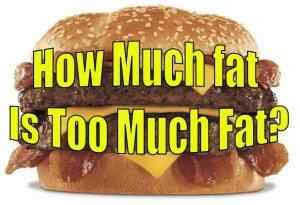 Rider Nutrition: How Much Fat Is Too Much Fat
