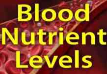 Rider Nutrition: How Blood Nutrient Levels Impact Performance