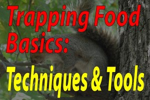 Trapping Food Basics Techniques And Tools - Featured