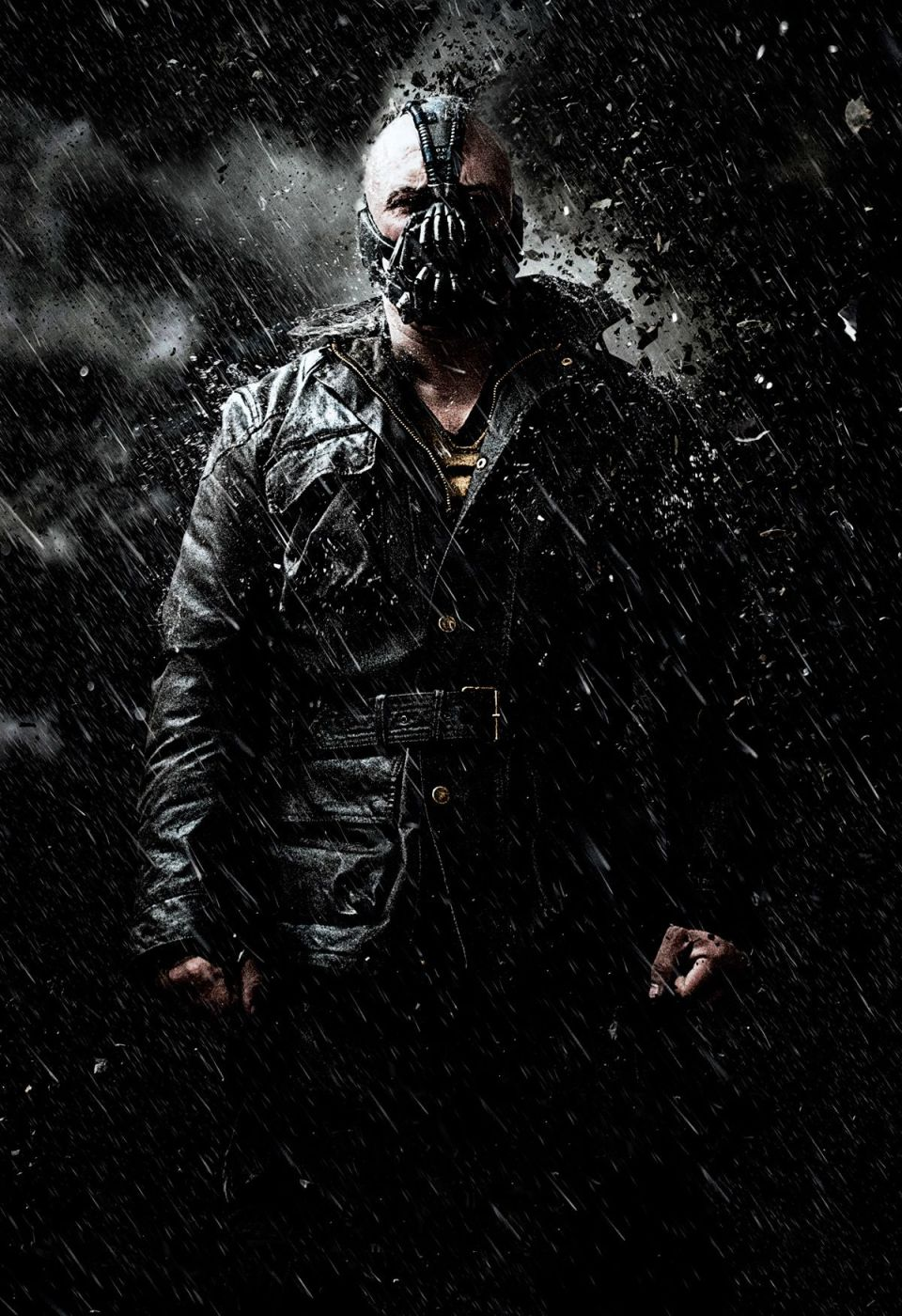 THE DARK KNIGHT RISES Textless Posters and Banners (5)