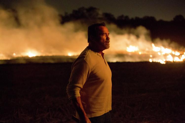 Arnold Schwarzenegger's Zombie Drama MAGGIE Got New Photos
