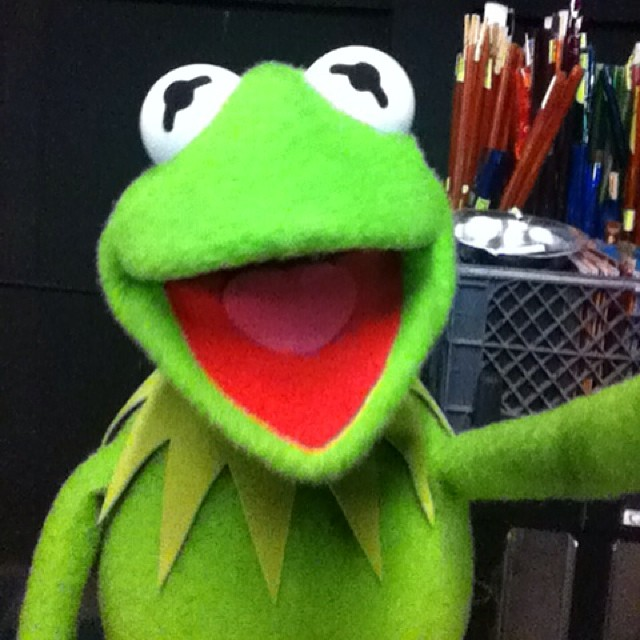 The Muppets selfie